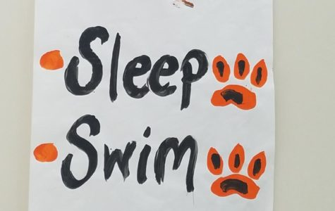 Swim Meet5 2017