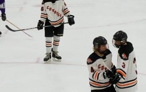 WHS Hockey 2017 Videos