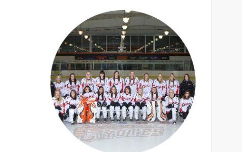 Senior Spotlight on WHS Girls Hockey